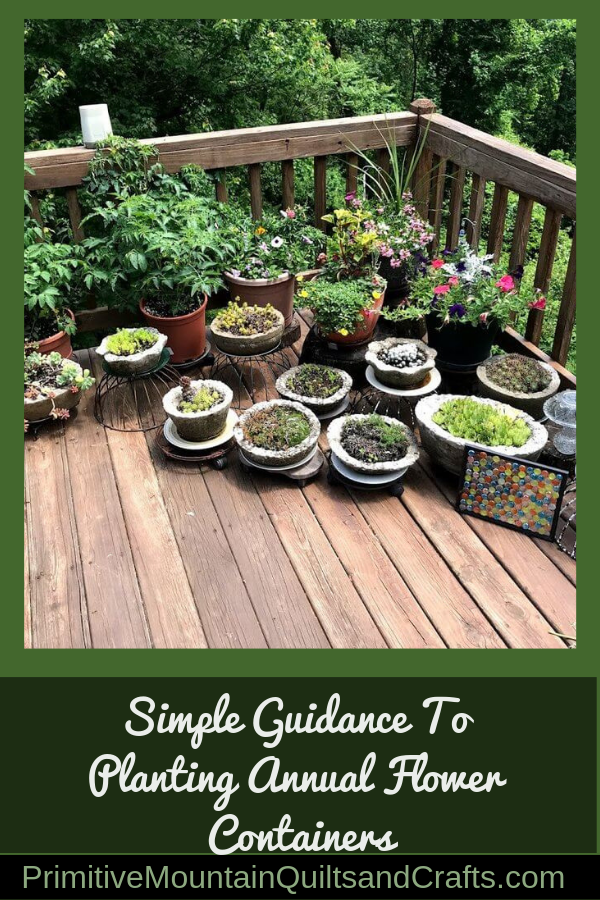 Simple Guidance To Planting Annual Flower Containers