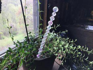 How to Make a Fairy Wand Plant Poke